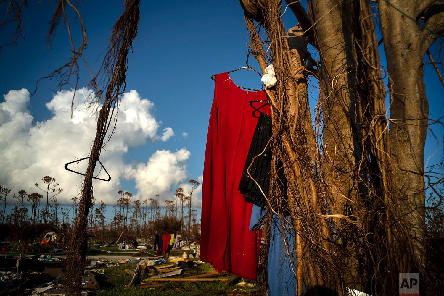 Clothes hang to dry from a tree next to the home of the mother of Valentino Ingraham that was destroyed one week ago by Hurricane Dorian in Rocky Creek East End, Grand Bahama, Bahamas, Sunday, Sept. 8, 2019. The family rode out the storm in nearby government shelters, and returned to find their homes destroyed. (AP Photo/Ramon Espinosa)