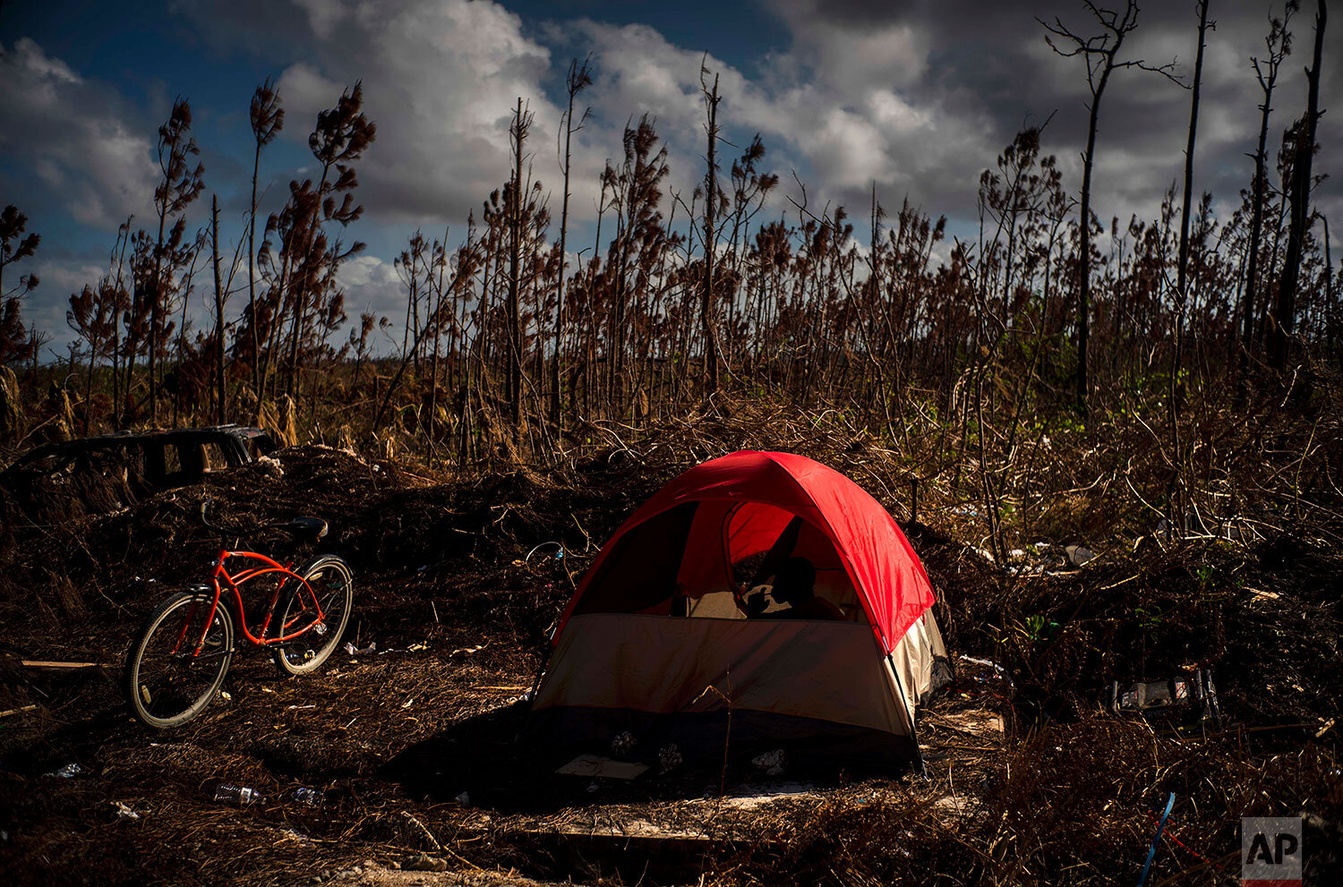 Haitian immigrant Francois Dickens, 22, displaced from his home destroyed by Hurricane Dorian rests in a tent in a forest in Abaco, Bahamas, Saturday, Sept. 28, 2019.  (AP Photo / Ramon Espinosa)