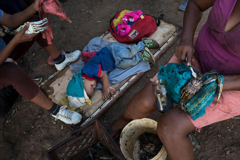 A boy sleeps as locals clean oil off of freshly harvested crabs from Lake Maracaibo, in Punta Gorda, Cabimas, Venezuela, May 21, 2019. (AP Photo/Rodrigo Abd)