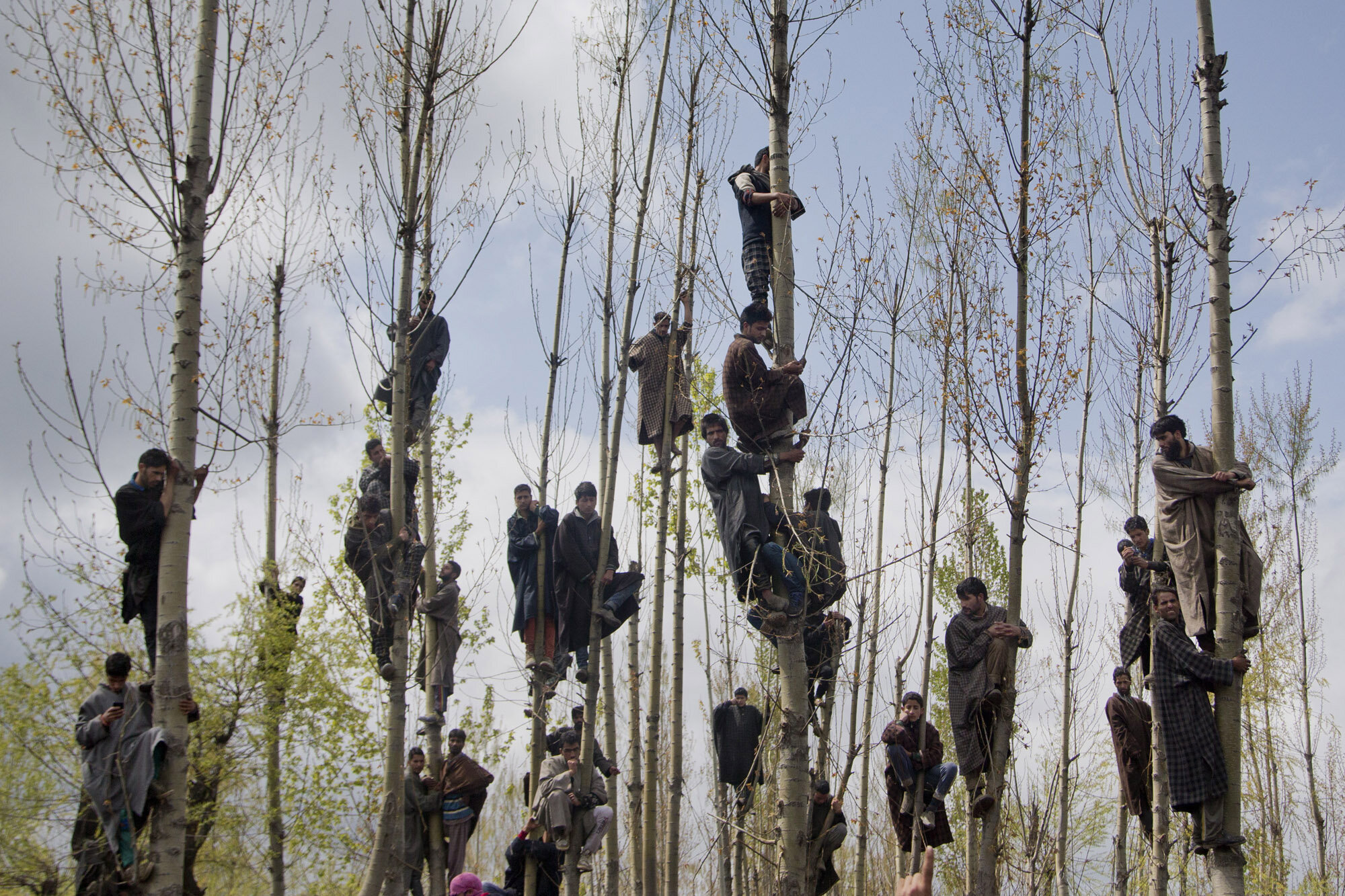 Kashmiri Muslims climb trees to watch the funeral procession of Waseem Malla, a suspected militant of Hizbul Mujahideen, in Pehlipora, some 60 kilometers (35 miles) south of Srinagar, Indian controlled Kashmir, April 7, 2016. (AP Photo/Dar Yasin)