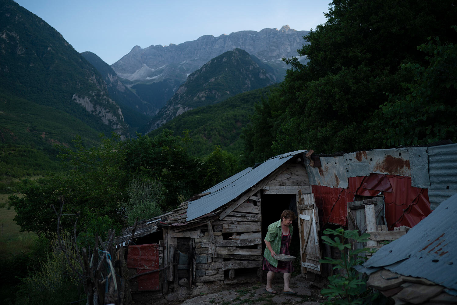 Vito Ilia, 64, walks out of a small cow shed outside her home in the village of Kanikol, Albania. (AP Photo/Felipe Dana)