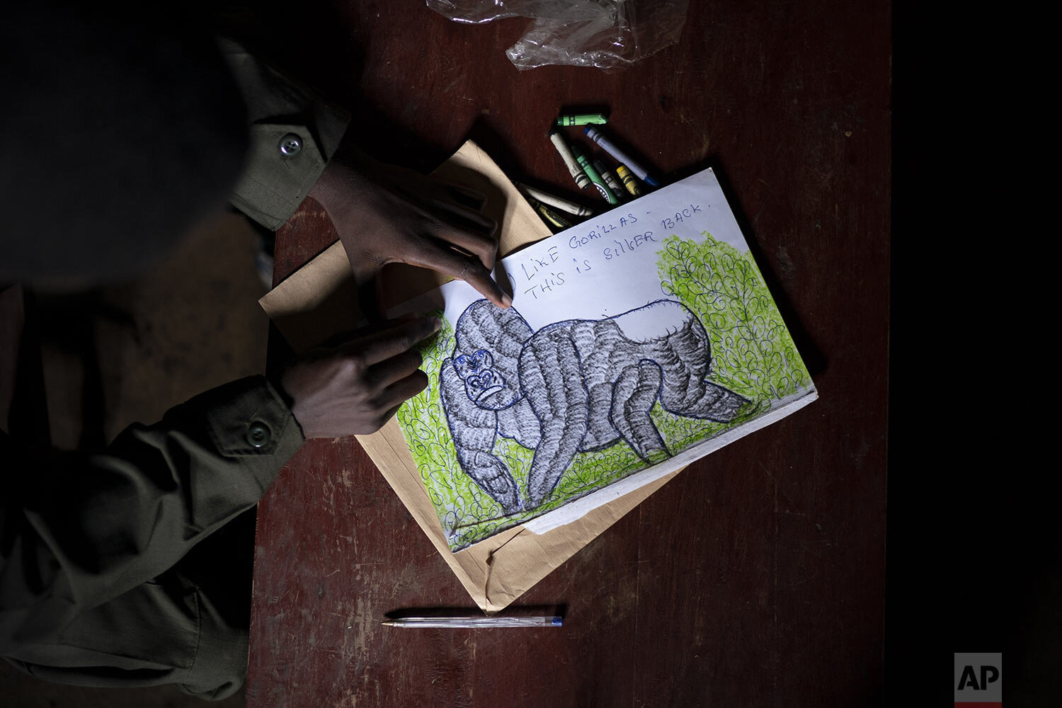 Jean Claude Masengesho, poses for a photo holding one of his many drawings of silverback gorillas. (AP Photo/Felipe Dana)
