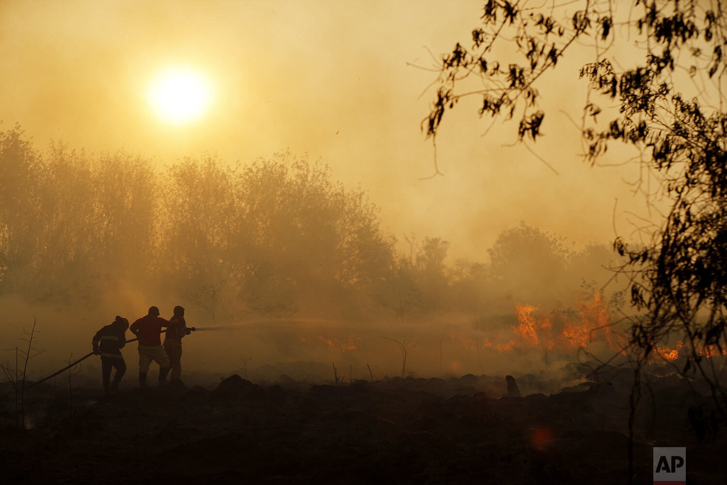 Firefighters from the city of Luque spray water on a fire in Guazu National Park on the outskirts of Asuncion, Paraguay, Tuesday, Oct. 1, 2019. More than 300,000 hectares of subtropical forest have burned since July across Paraguay due to the illegal burning of grasslands for agricultural planting, according to the National Security Ministry. (AP Photo/Jorge Saenz)