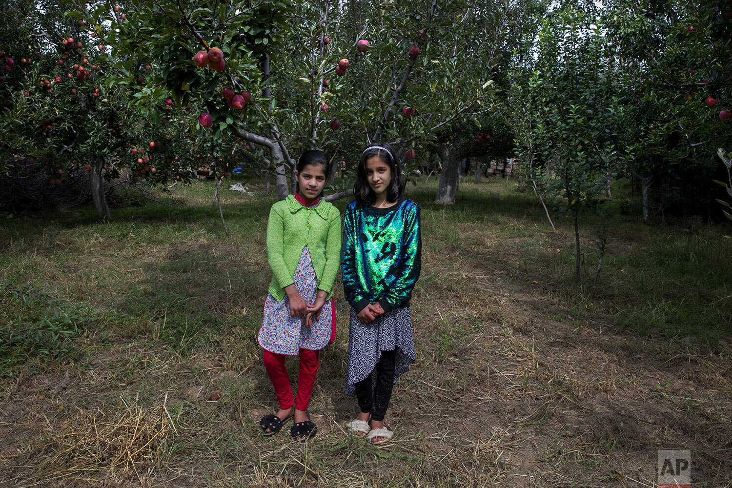 Twin sisters Tabeer Shafi Bhat, right, and Taseer Shafi Bhat stand for a photograph inside an apple orchard in Wuyan, south of Srinagar, Indian controlled Kashmir, Sunday, Oct. 6, 2019. (AP Photo/ Dar Yasin)