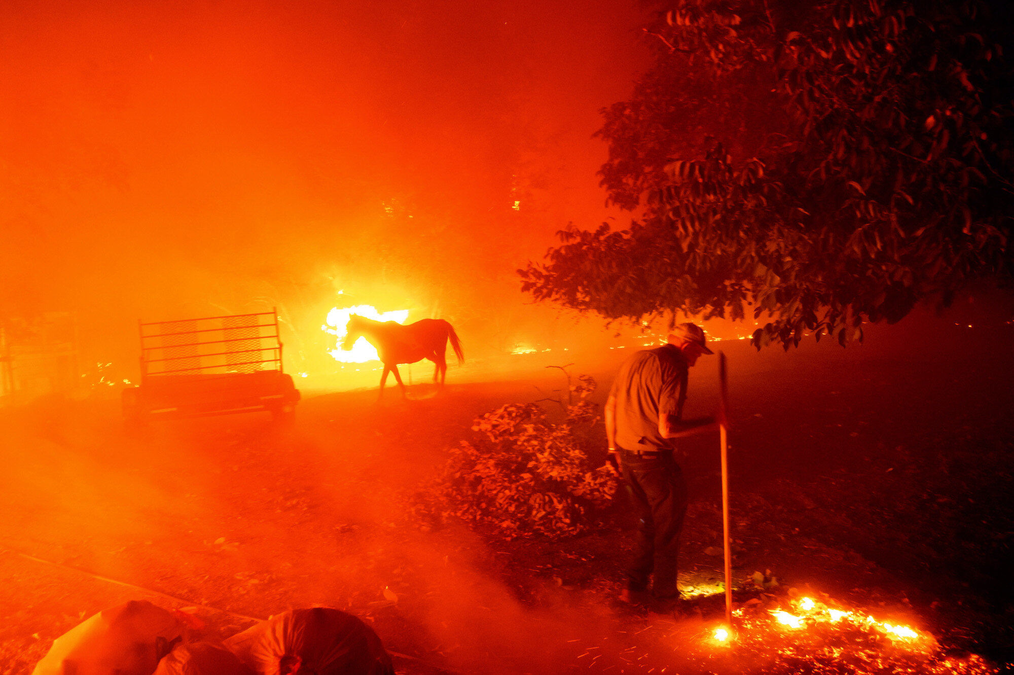 Bill Nichols, 84, works to save the home he has lived in for 77 years as a wildfire tears through Vacaville, Calif., on Aug. 19, 2020. Dozens of wildfires were sparked by lightning strikes during a statewide heat wave. (AP Photo/Noah Berger)