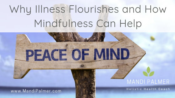 Why Disease Flourishes and Why Mindfulness is the Answer (1).png