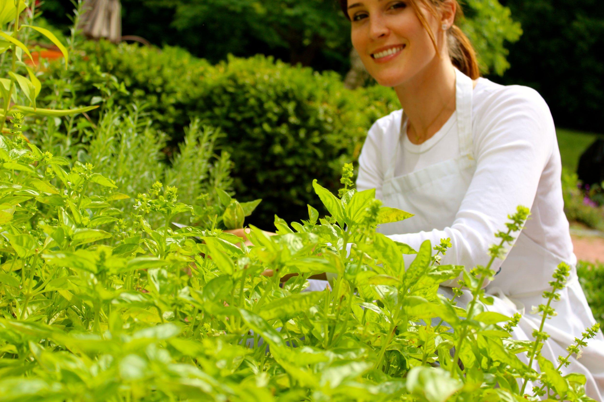 olivia  herbs