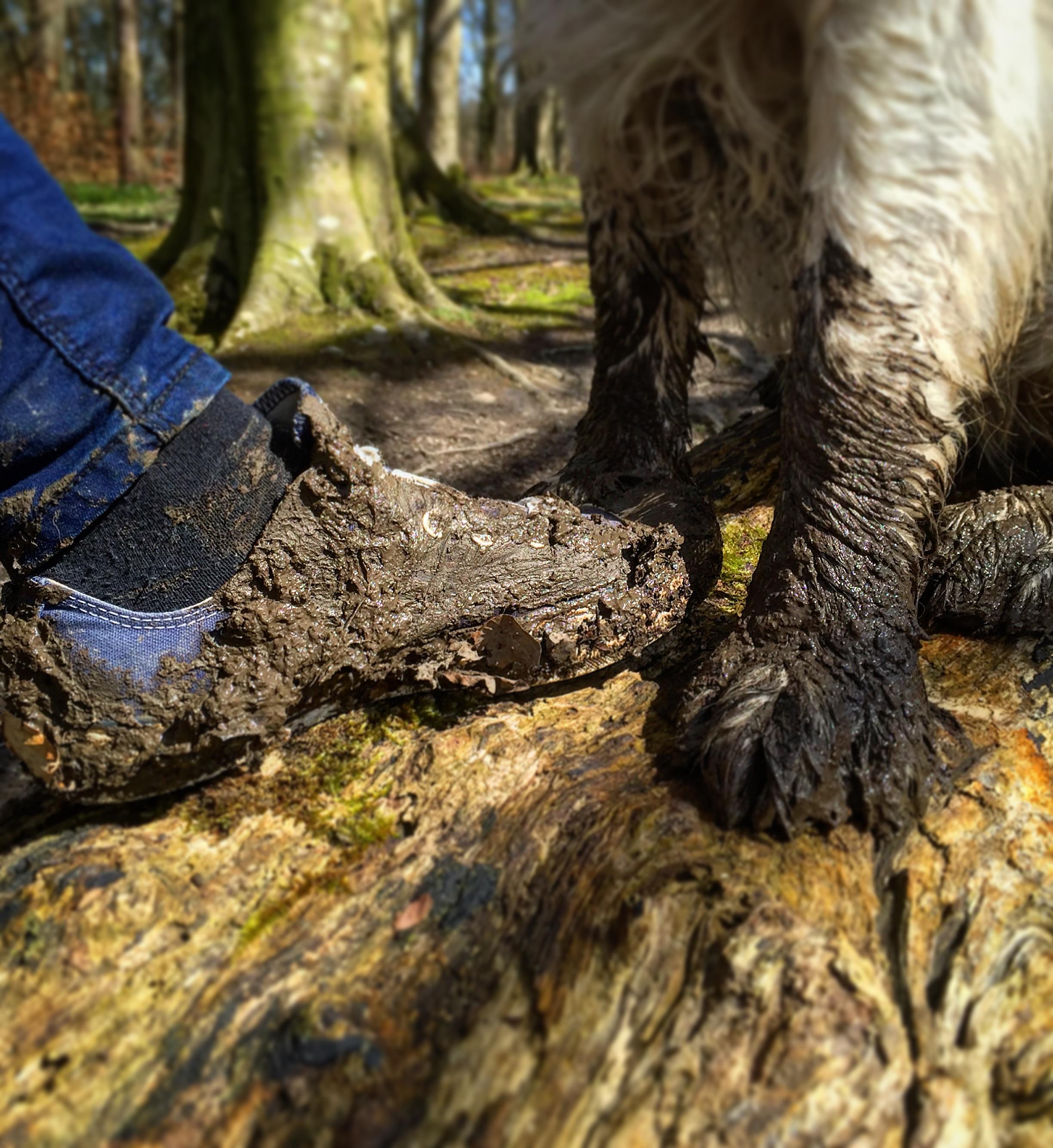 mucky_feet_dog_shoe_helens_bay_to_crawfordsburn_roadtrip_coast_ni_explorer_niexplorer_northern_ireland_blog.jpg