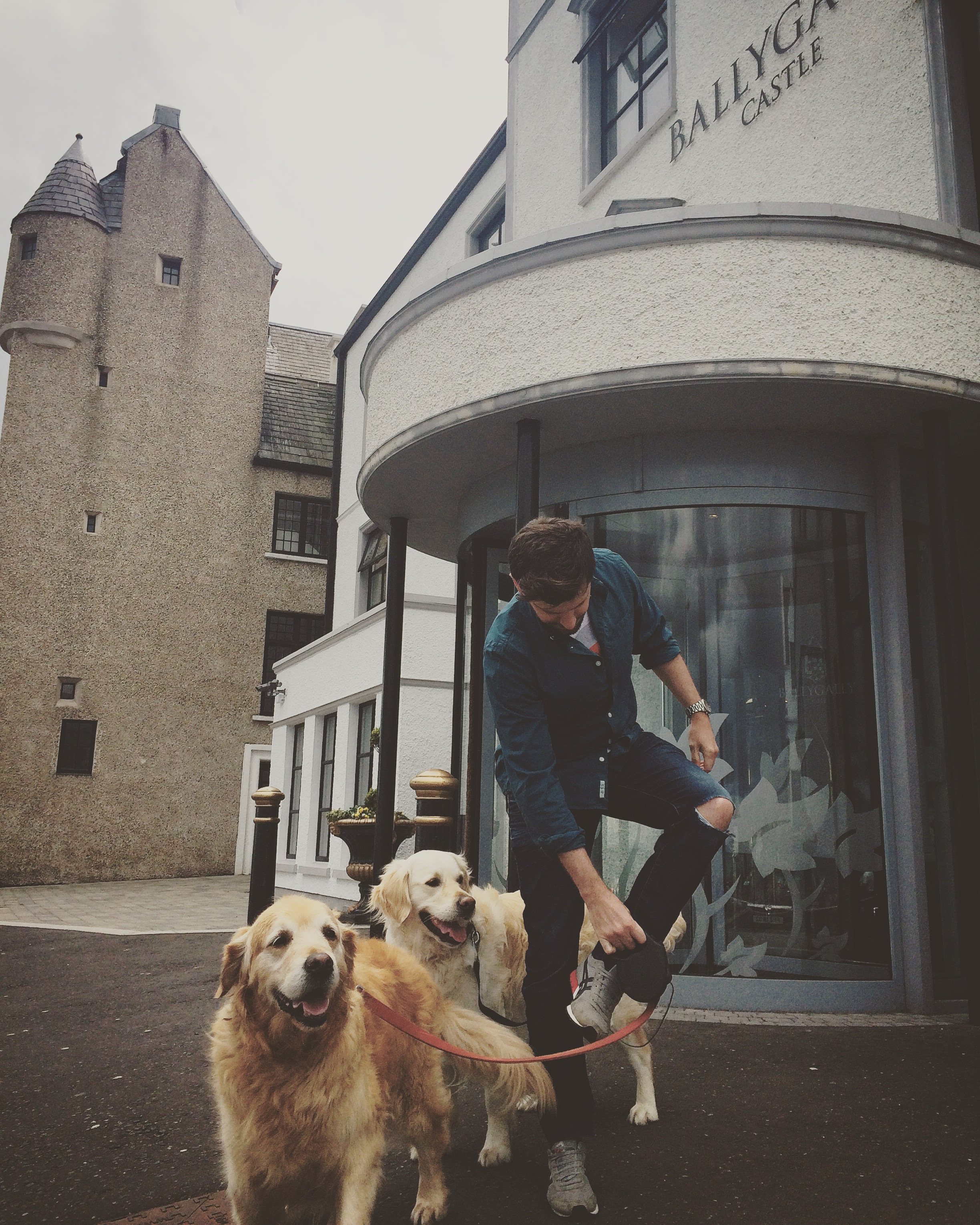 dogs_ballygally_castle_roadtrip_causeway_antrim_coast_ni_explorer_niexplorer_northern_ireland_blog.jpg