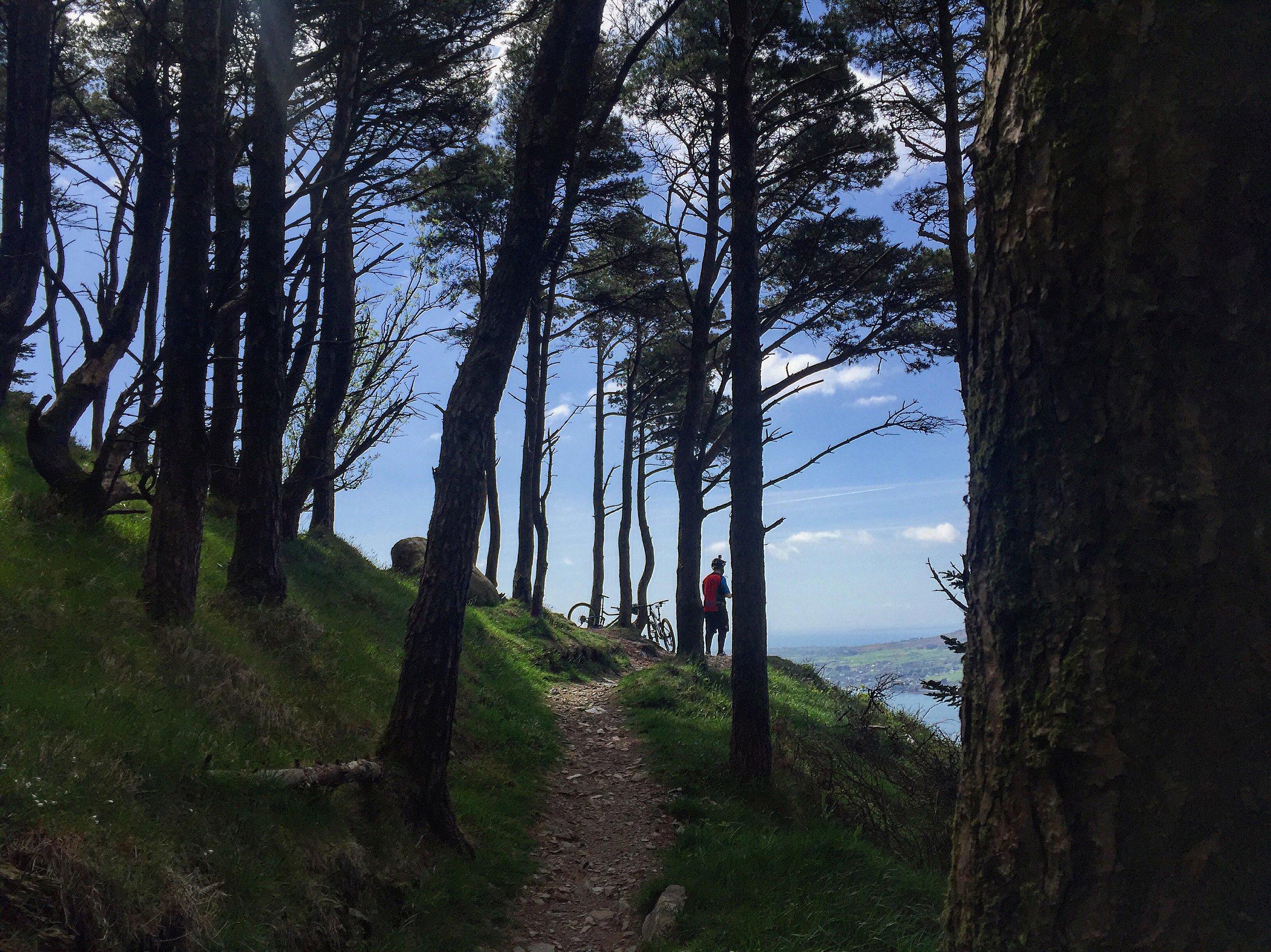 kodak_corner_kilbroney_forest_trails_rostrevor_mtb_mountainbiking_ni_explorer_niexplorer_northern_ireland_blog.jpg