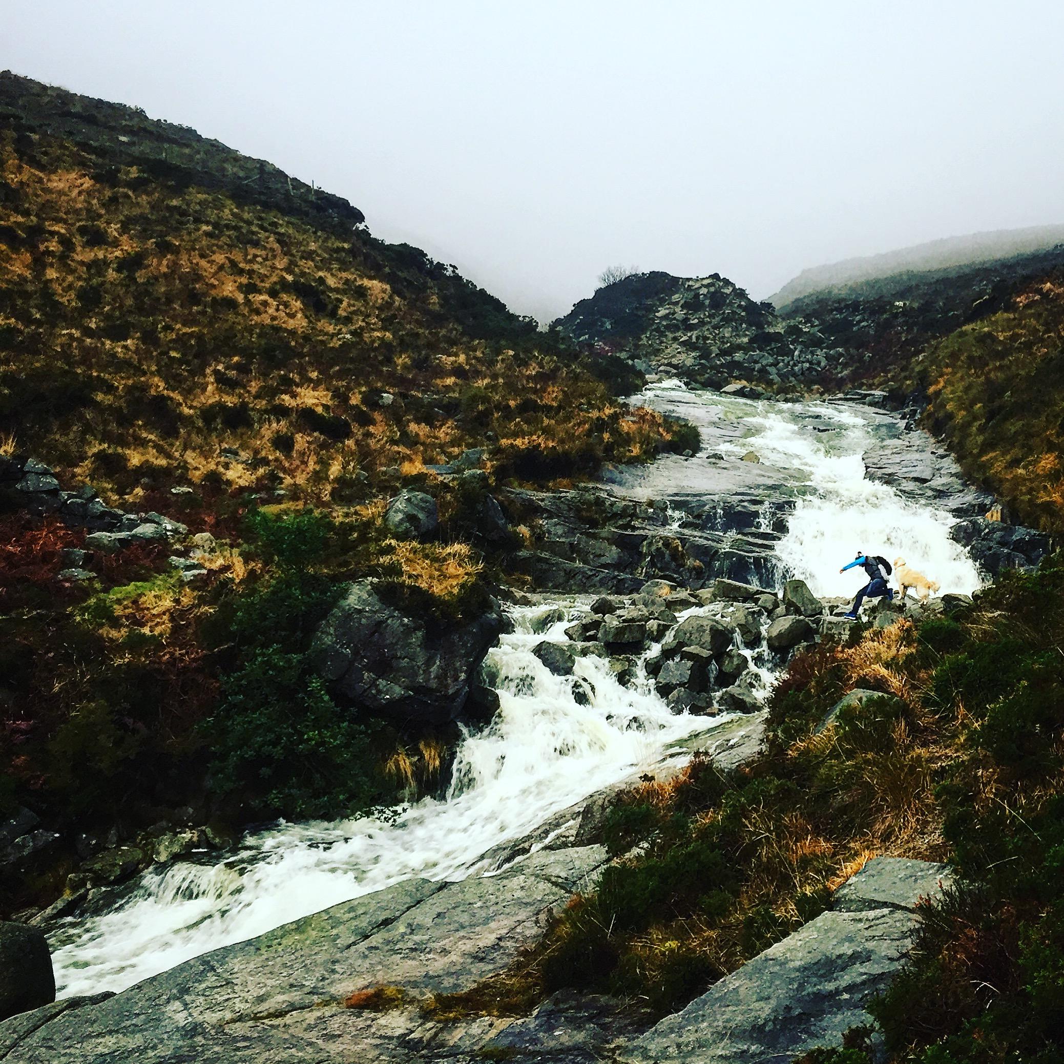 crossing_river_dog_slieve_donard_newcastle_tollymore_mourne_mountains_ni_explorer_niexplorer_northern_ireland_blog.jpg