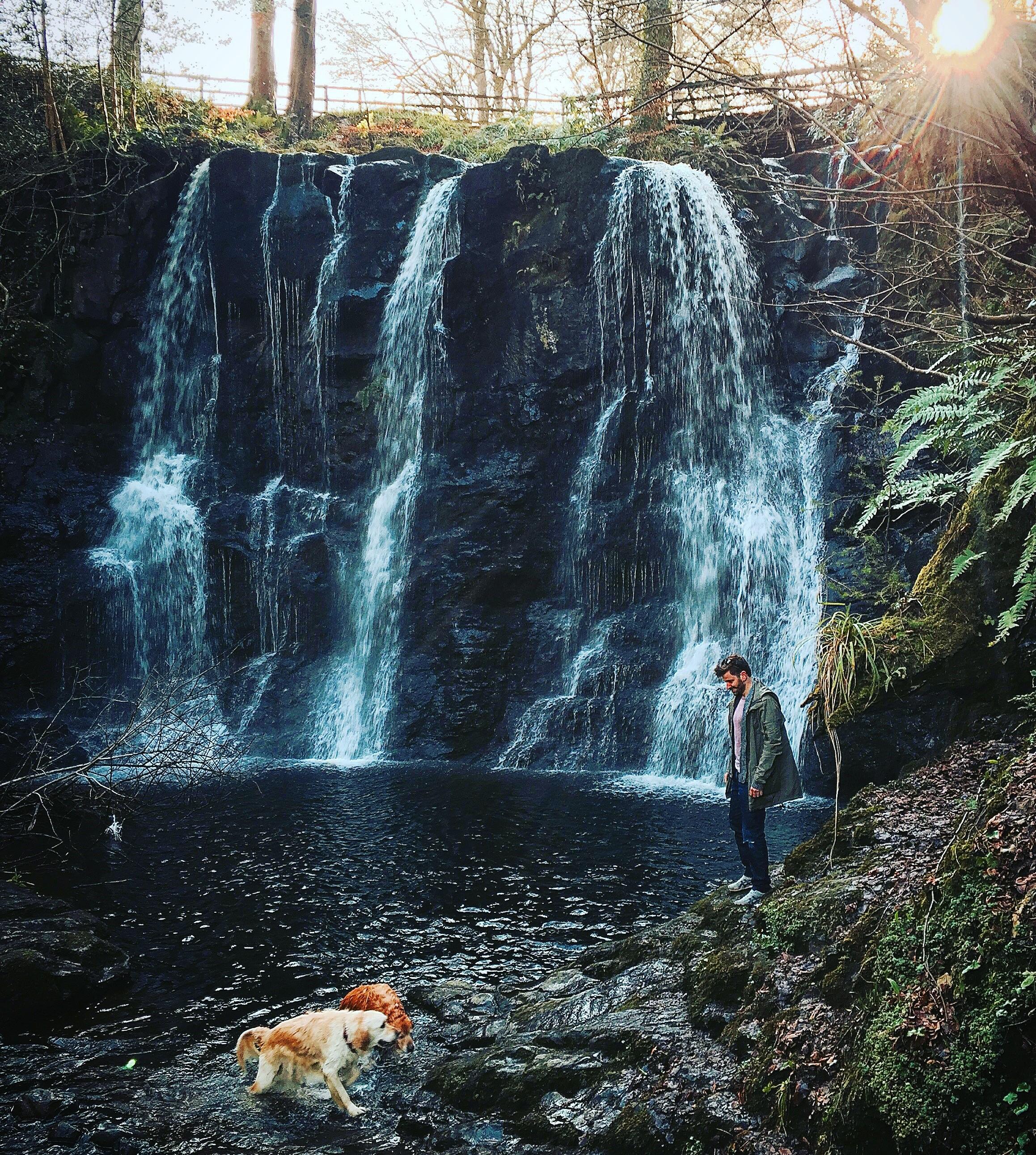 glenoe_waterfall_golden_retriver_dogs_antrim_ni_explorer_niexplorer_northern_ireland_blog.jpg