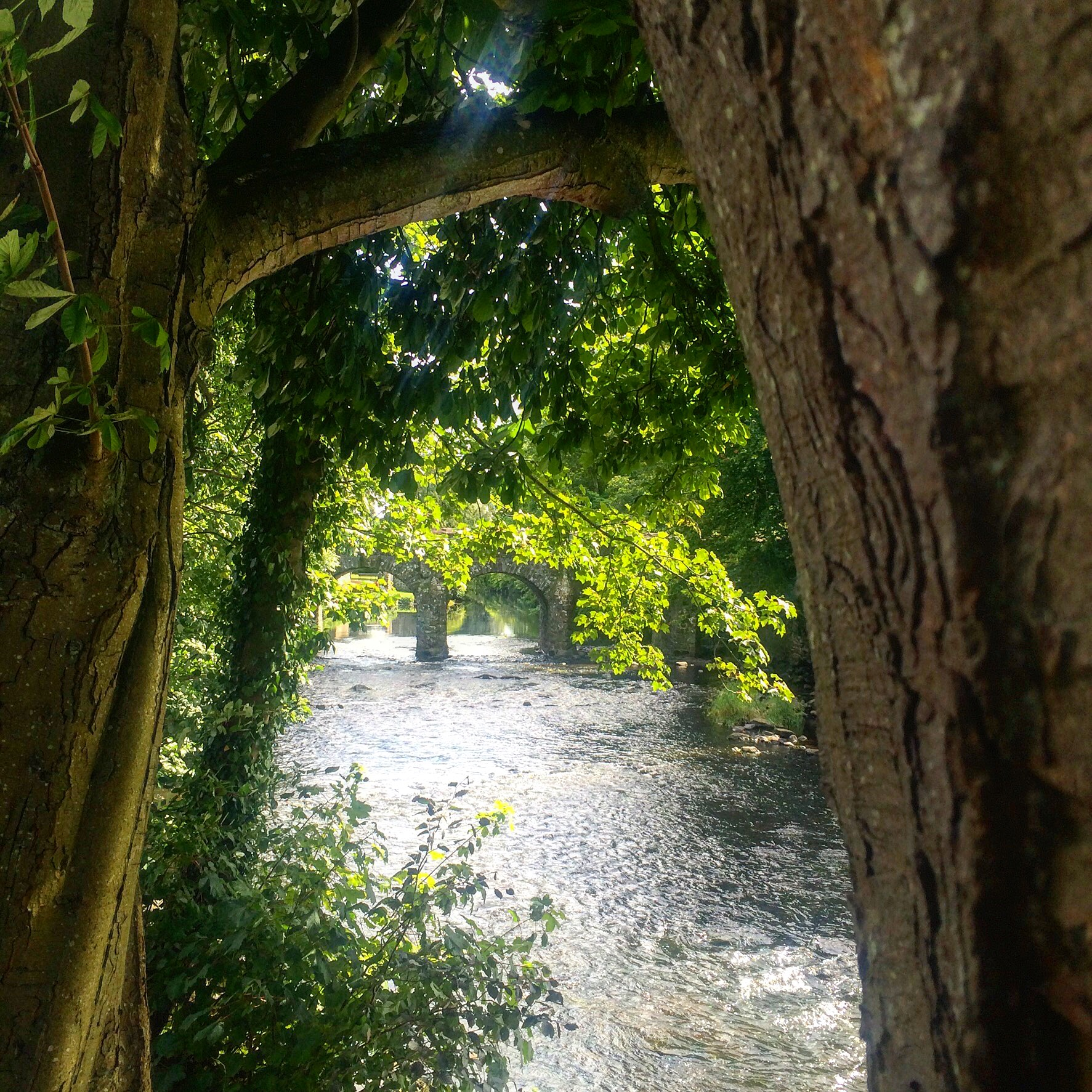 antrim_castle_walled_garden_lough_neagh_northern_ireland_ni_explorer_niexplorer (1)