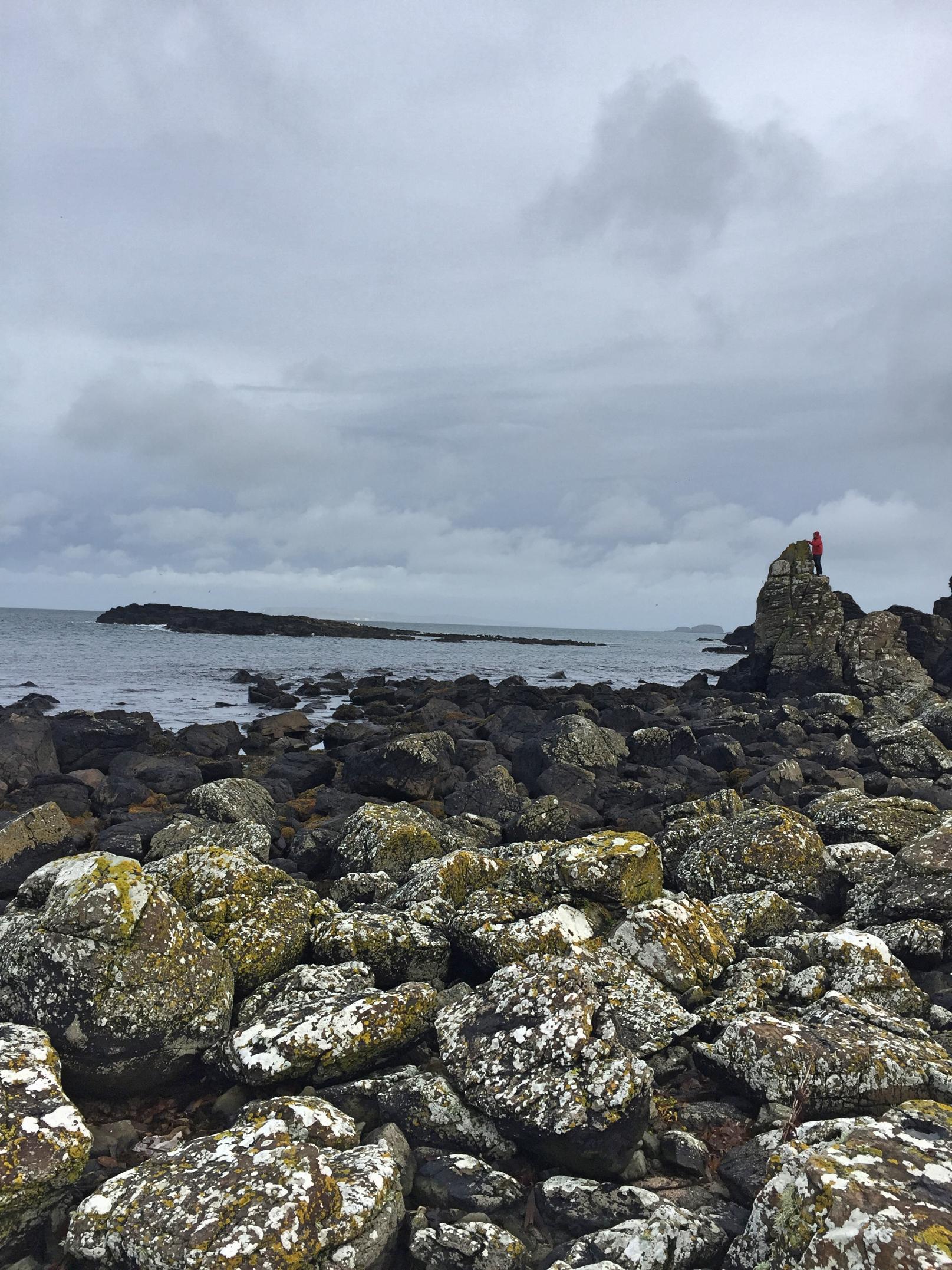 dunseverick_harbour_northcoast_causewaycoast_northern_ireland_niexplorer_ni_explorer (2).jpg