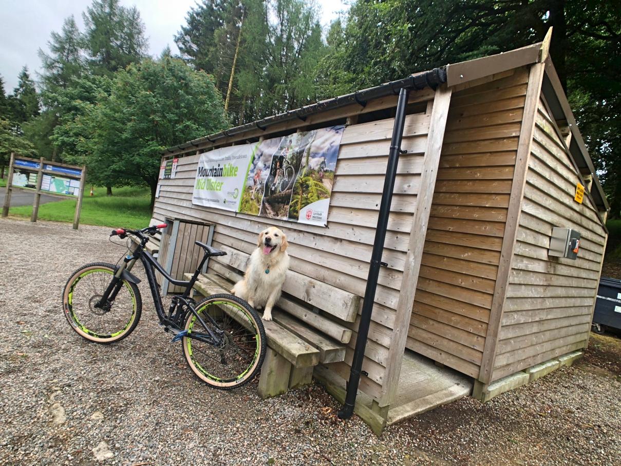 ni_explorer_davagh_forest_mountain_biking_northern_ireland (9).jpg