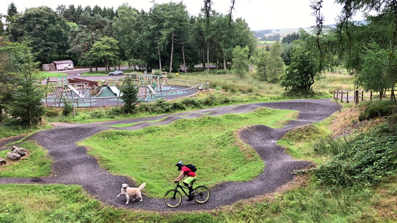 ni_explorer_davagh_forest_mountain_biking_northern_ireland (2).jpg