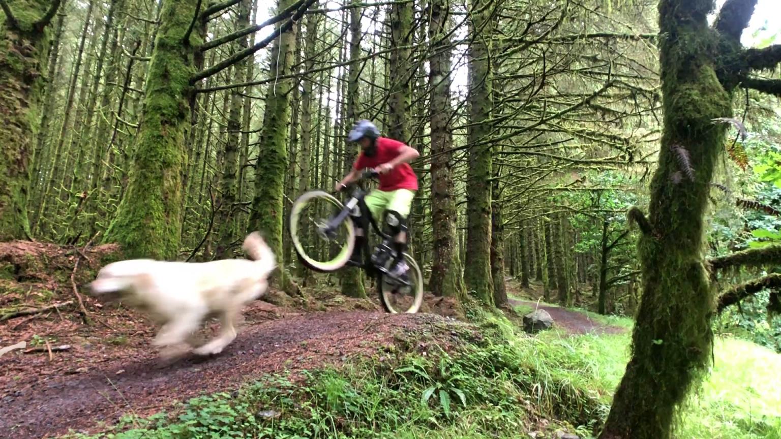 ni_explorer_davagh_forest_mountain_biking_northern_ireland (8).jpg