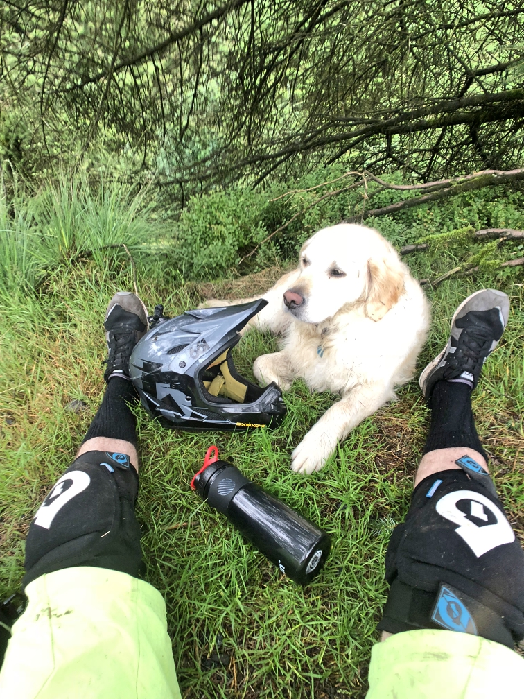 ni_explorer_davagh_forest_mountain_biking_northern_ireland (25).jpg