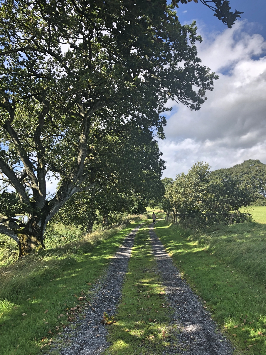 crom_castle_national_trust_fermanagh_northern_ireland_ni_explorer (9).jpg