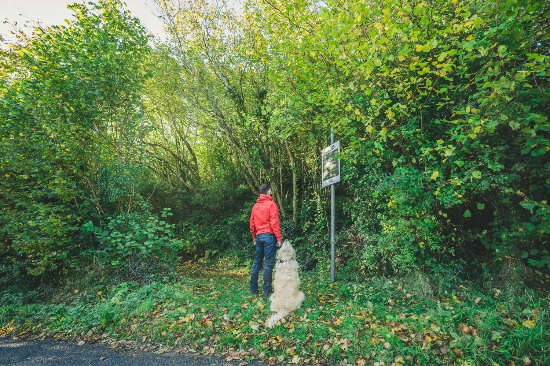 straidkilly_glenarm_walking_northern_ireland_stillpoint_niexplorer (1).jpg