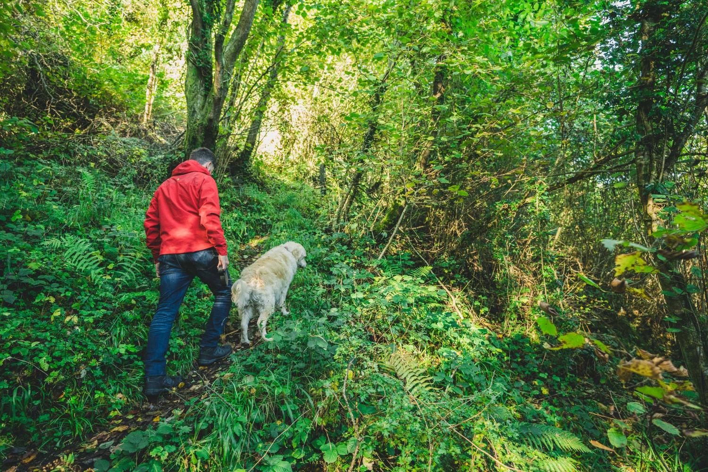 straidkilly_glenarm_walking_northern_ireland_stillpoint_niexplorer (6).jpg