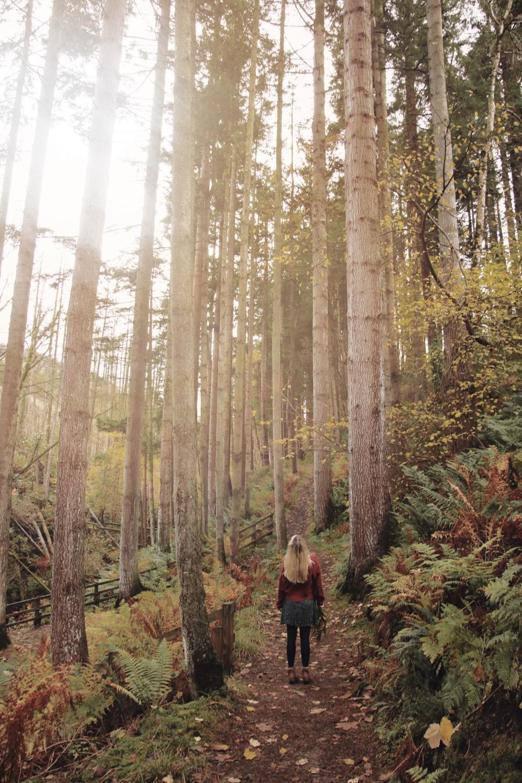 glenariff-forest-waterfall-northern-ireland-full-shilling-ni-explorer (34).jpg