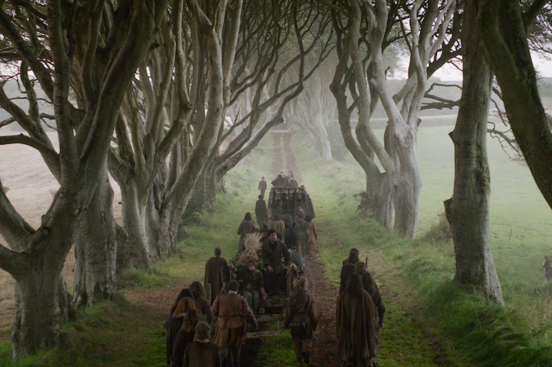 "The Dark Hedges aka ""Kingsroad"" in Game of Thrones (Image: Discover NI/HBO)"