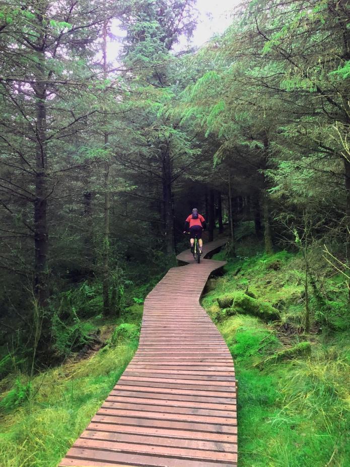 rostrevor-kilbroney-forest-county-down-mountainbiking-northern-ireland (5).jpg