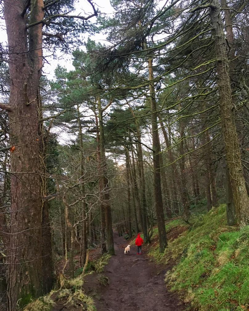 cave-hill-belfast-northern-ireland-ni-explorer (6).jpg