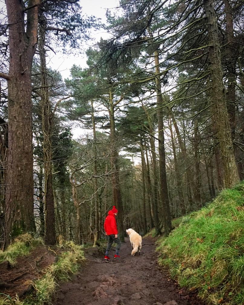 cave-hill-belfast-northern-ireland-ni-explorer (5).jpg