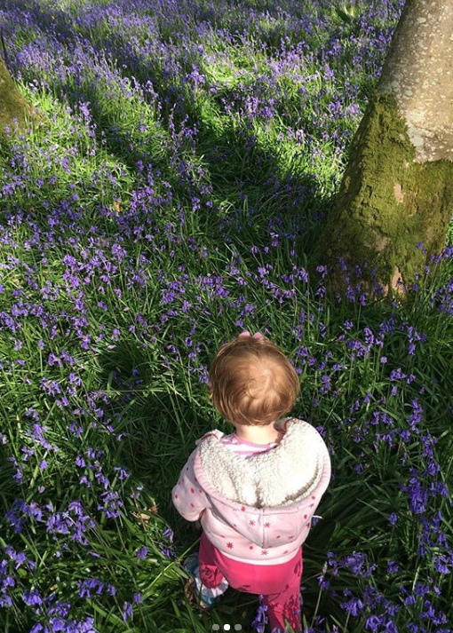 allyb.was.here-knockmanny-forest-park-bluebells2.PNG