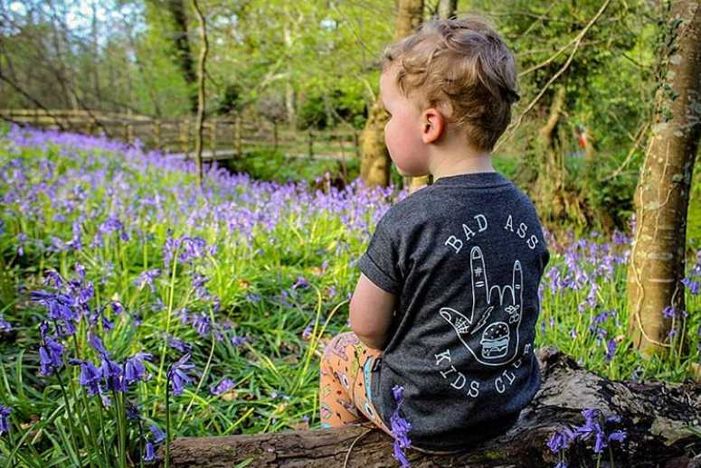 roe-valley-country-park-best-places-see-bluebells-northern-ireland3.jpg