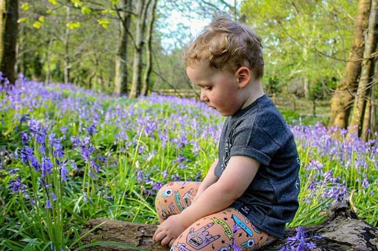 roe-valley-country-park-best-places-see-bluebells-northern-ireland5.jpg