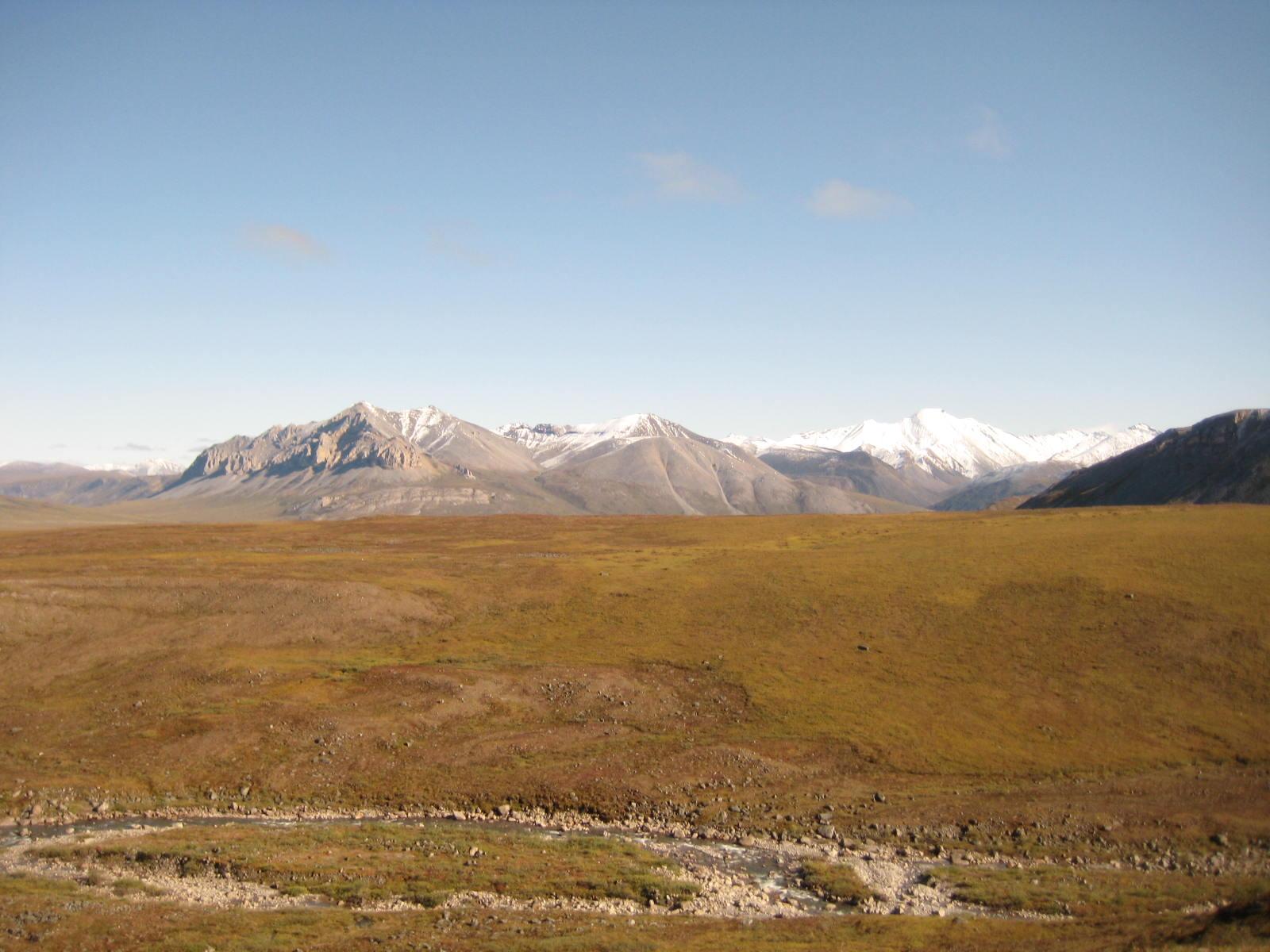 The sun may be shining bright, but the reddening tundra betrays the seasonal change that lurks around the corner.