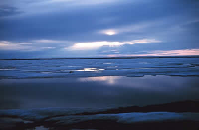 Warming temperatures are causing rapid ice melting in the Arctic. Photo courtesy noaa.gov, which issues an annual Arctic limate report card.