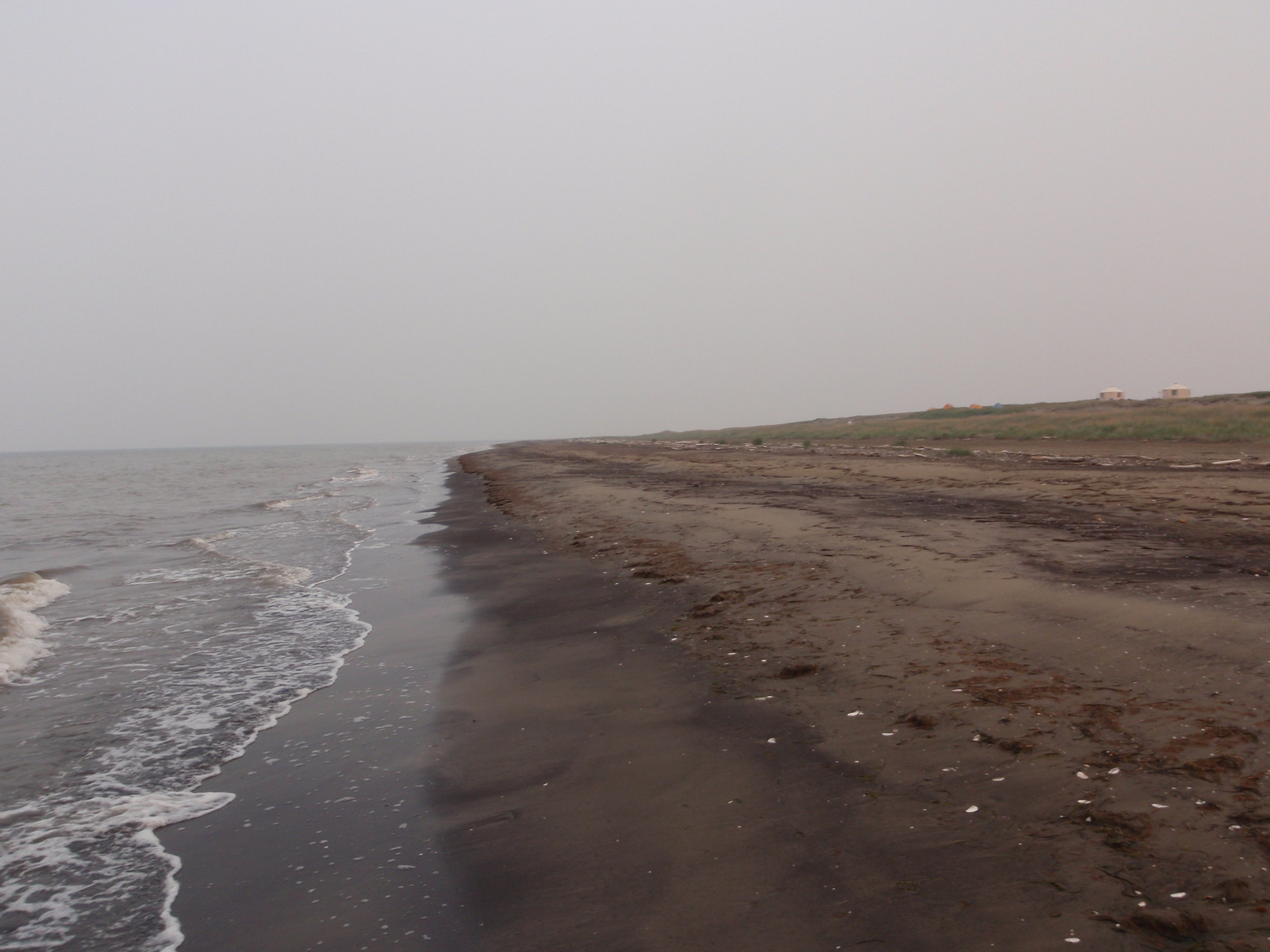 The beach at Cape Espenberg today. One thousand years ago, this was the site of a robust Inuit community. Photo by Owen K. Masen.