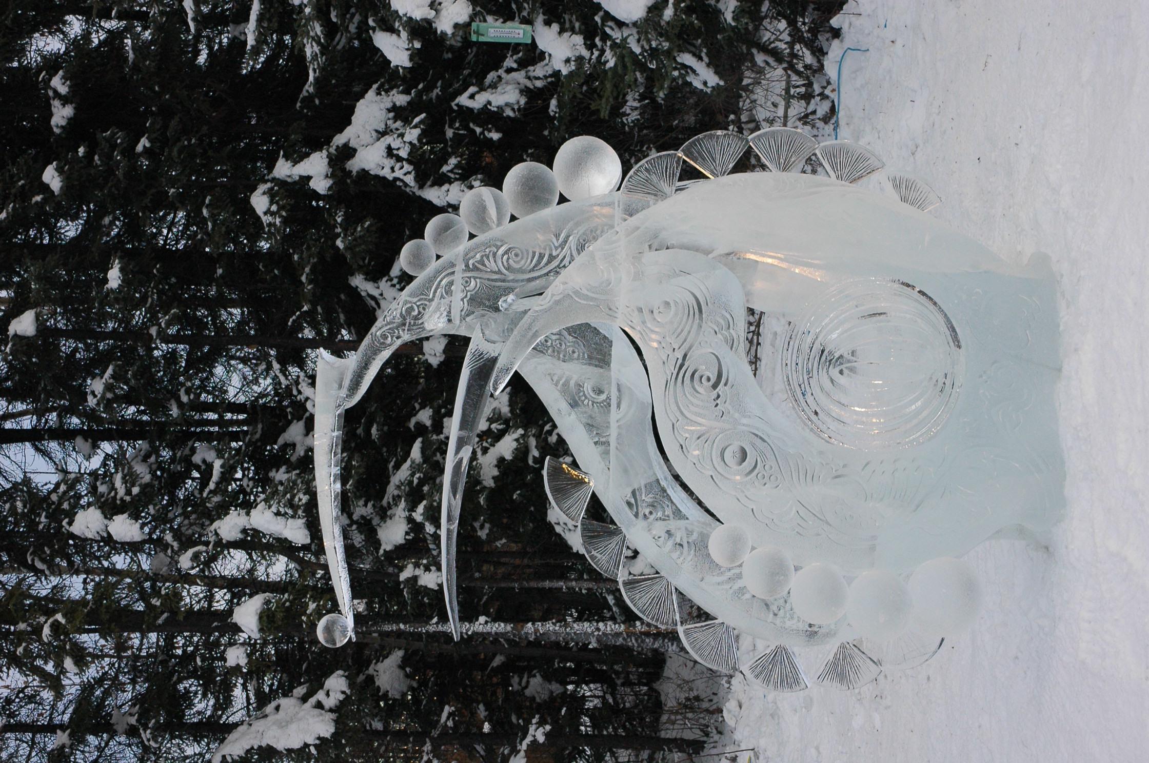 Rotation of IcePark