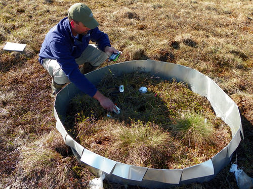Measuring soil moisture and temperature
