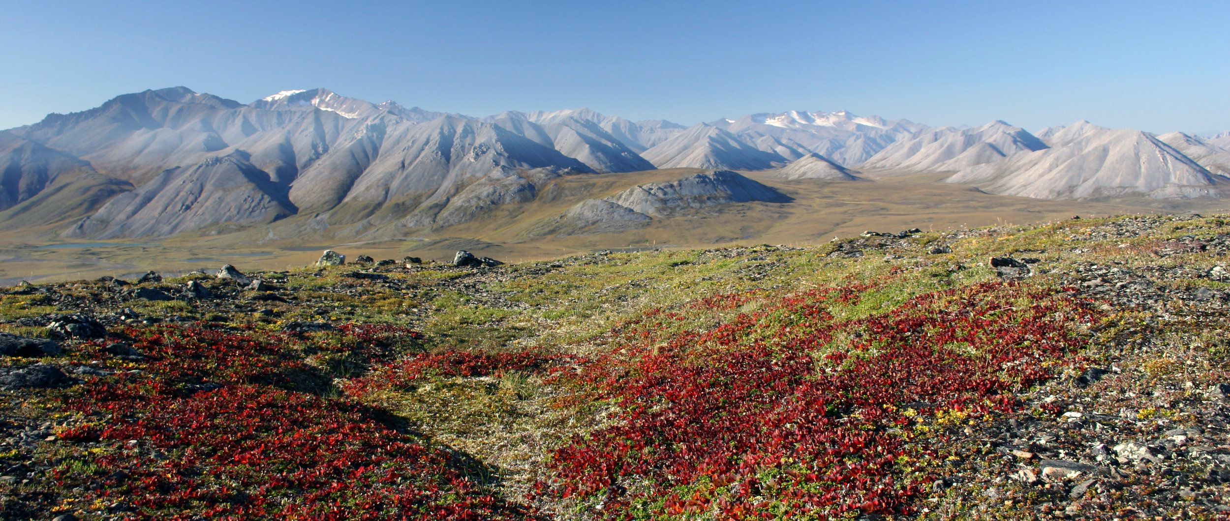 More than breathtaking scenery. Dr. Matthew Wallenstein is studying the relationship between plant growth, Arctic soil microbes, and carbon sequestration in Alaska's Brooks Range. All photos: Matthew Wallenstein