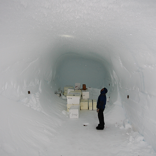 The team burrowed into this impressive underground storage area at NEEM. It's made entirely of snow. Photo courtesy: GrIT Team
