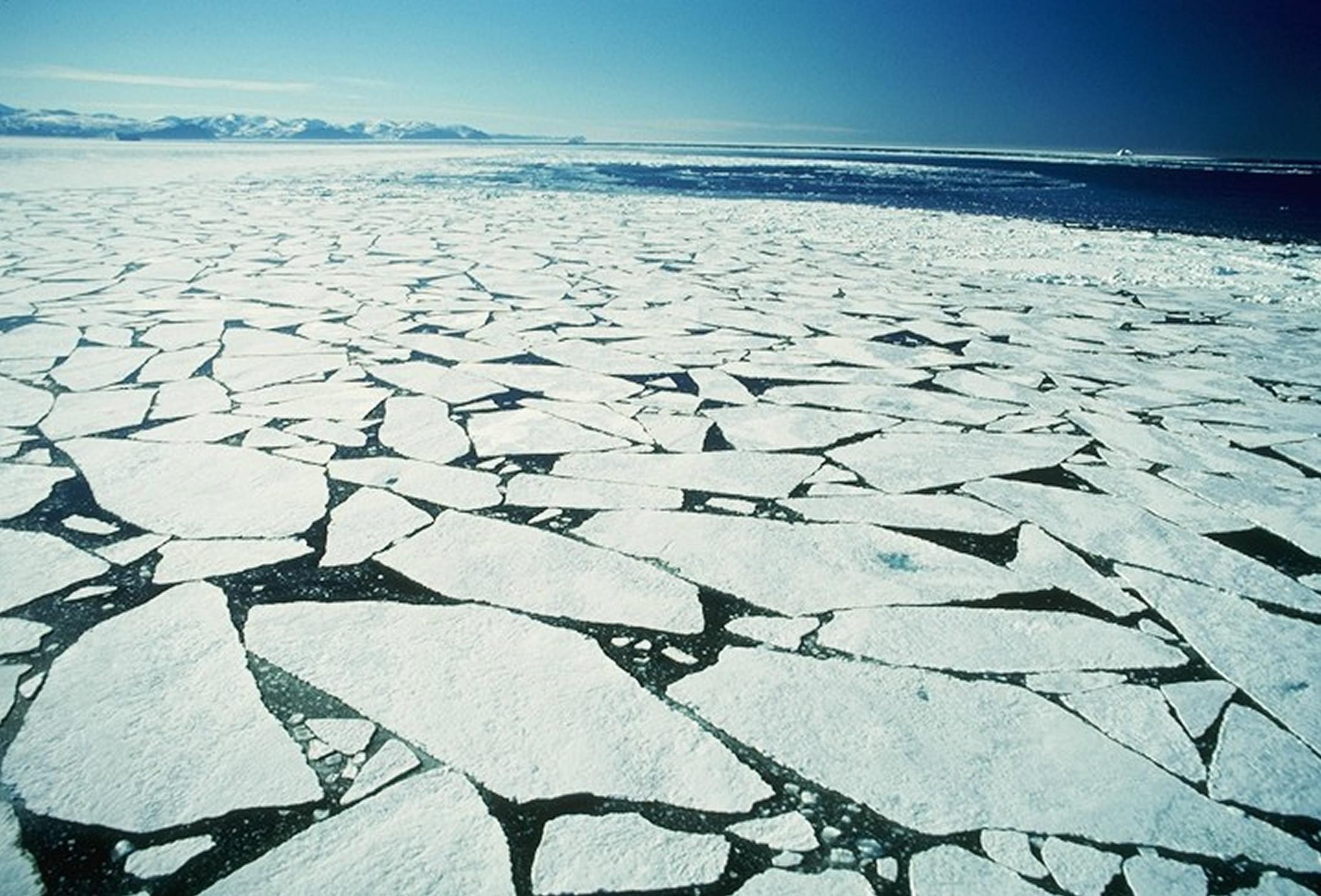 sea-ice.jpg