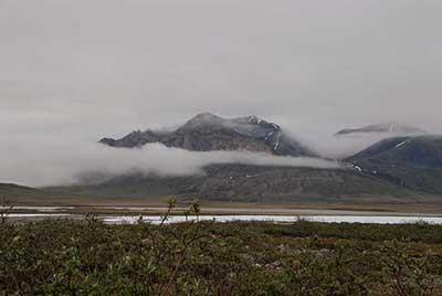 Walker returns to the Dalton Highway each year in part for its stunning landscape. Photo: Alaska Geobotany Center