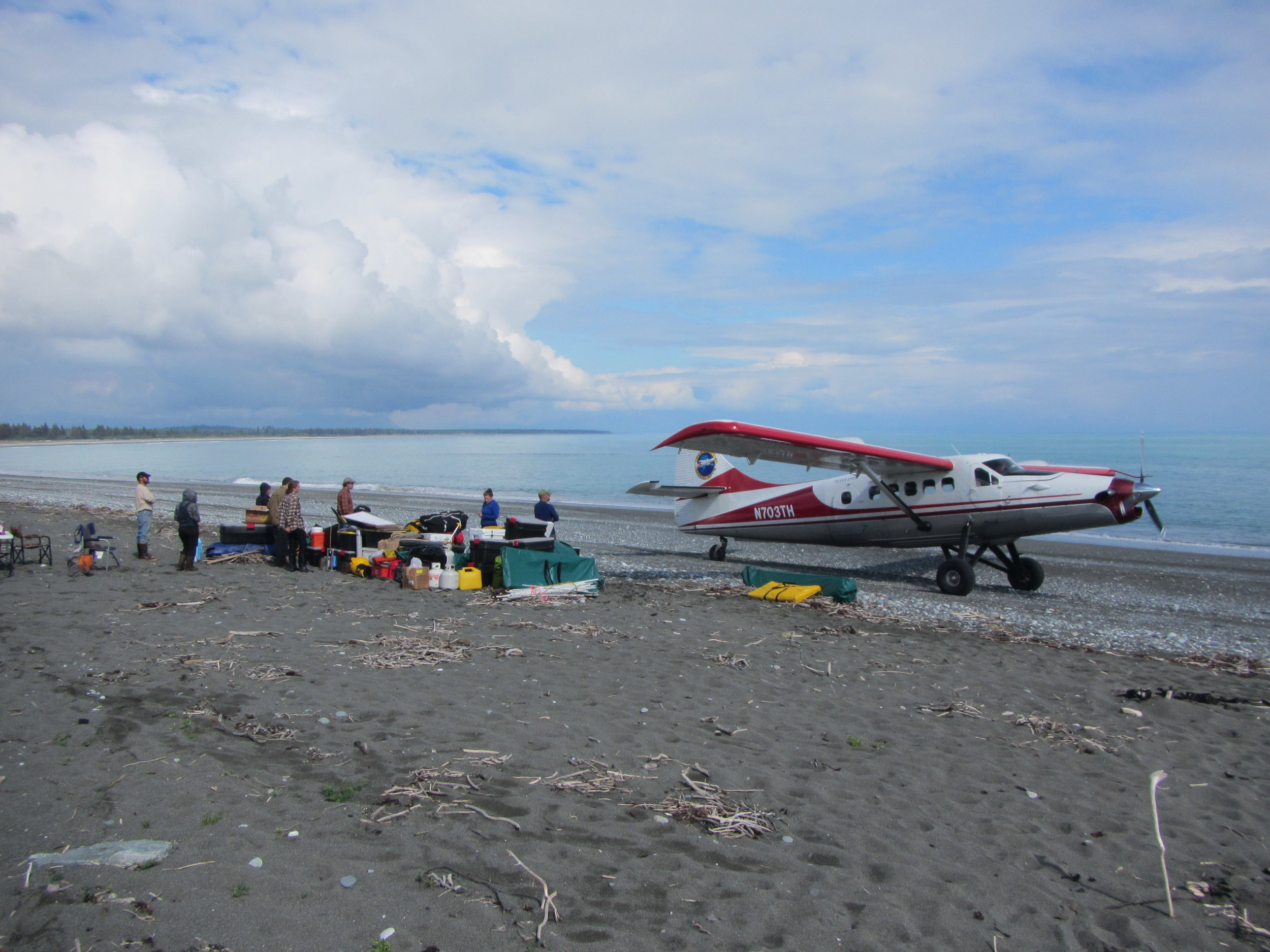 The research team and a Yakutat Coastal Air Otter on the beach near the Smithsonian base camp on the Malaspina Glacier foreland. Photo: by Mark Luttrell