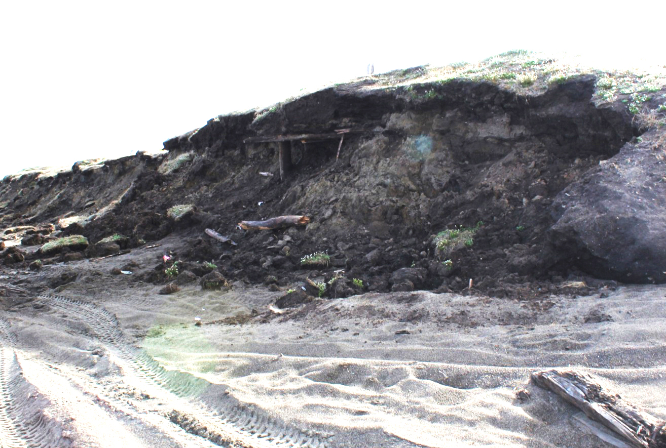 A storm in 2013 caused erosion along a bluff about 12 miles south of Barrow, Alaska, revealing an ancient sod house that has been dated to as early as 500 AD. Photo: Anne Jensen