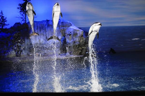 John G. Shedd Aquarium Oceanarium Presentation Hall
