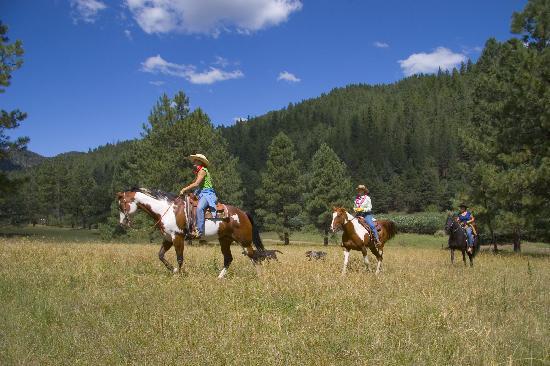 horseback-riding-in-ruidoso.jpg