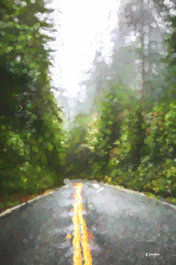 Redwoods- CA