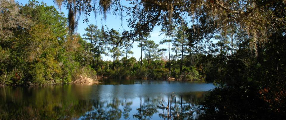 Quieter Florida lifestyle