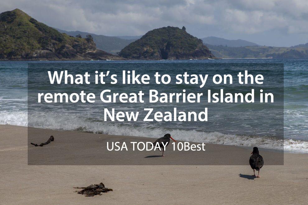 Remote Great Barrier Island.jpg