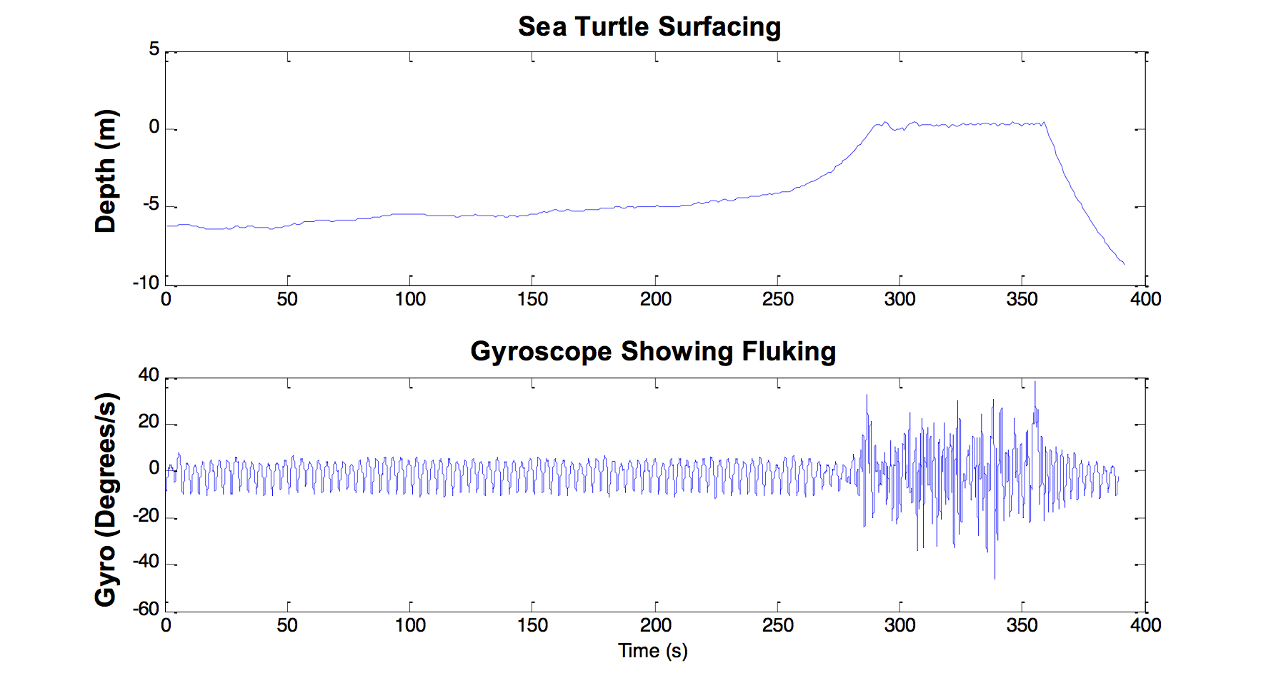OpenTagSeaTurtle.png